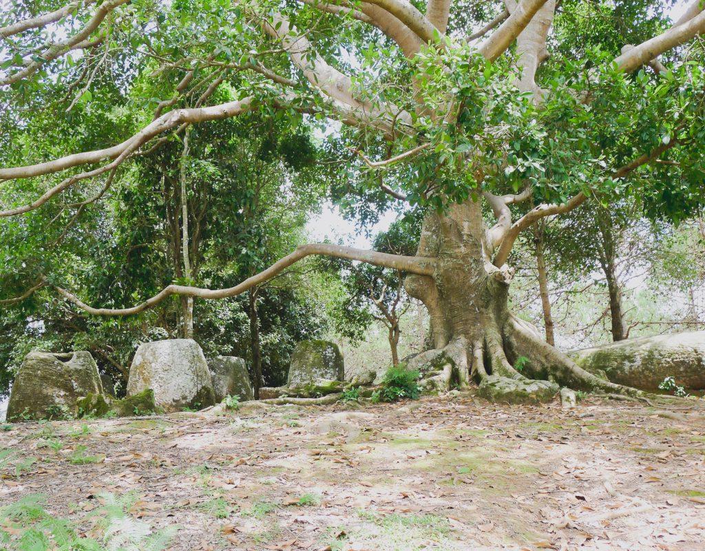 Laos - Phonsavan 5